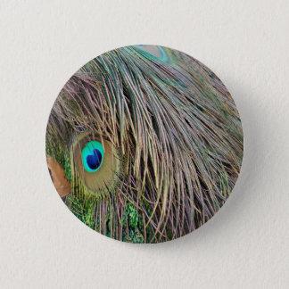Pfau versieht schneidige Farben mit Federn Runder Button 5,1 Cm