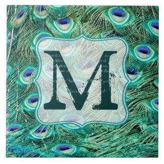 Pfau-Vogel-Feder-aquamarine Keramikfliese