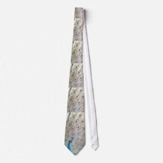 Pfau-Vogel u. Feder-Krawatte Krawatten