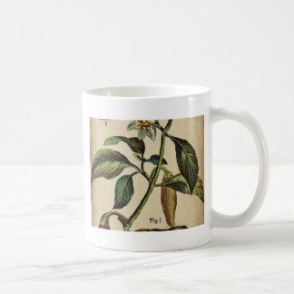 Pfeffer-Annuumgrüner Pfeffer Kaffeetasse