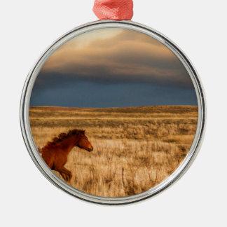 Pferd allein silbernes ornament