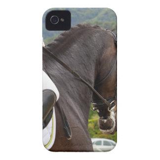 Pferd am Errichten iPhone 4 Hüllen
