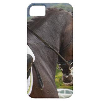 Pferd am Errichten Schutzhülle Fürs iPhone 5