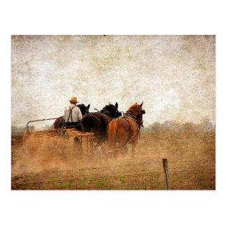 Pferd angetriebene praktische Arbeit Postkarte