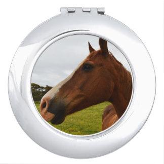 Pferd, _Chocolate, _Ladys_Round_Compact_Mirror. Schminkspiegel