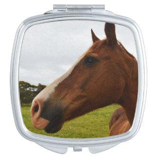 Pferd, _Chocolate, _Ladys_Square_Compact_Mirror. Taschenspiegel