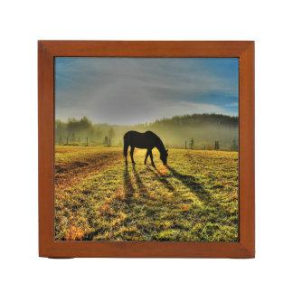Pferd, das am Sonnenaufgang im nebelhaften Stifthalter