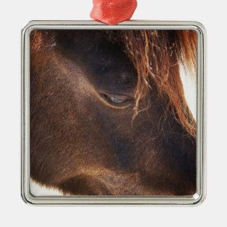 Pferd, das unten schaut quadratisches silberfarbenes ornament