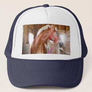 Pferd der Kappe in des Stall-3