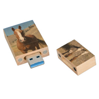 Pferd Holz USB Stick