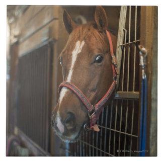 Pferd im Stall Große Quadratische Fliese