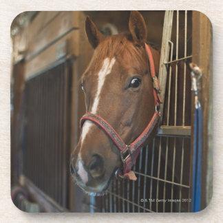 Pferd im Stall Drink Untersetzer