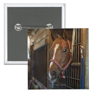 Pferd im Stall Quadratischer Button 5,1 Cm