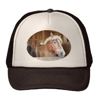 Pferd in einem Stall Baseballkappen