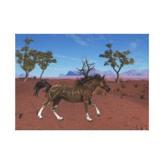 Pferd Leinwanddruck