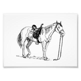 Pferd mit Sattel Fotografischer Druck