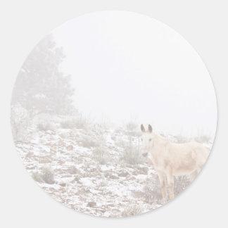 Pferd mit Winter-Jahreszeit-Schnee und Nebel Runder Aufkleber