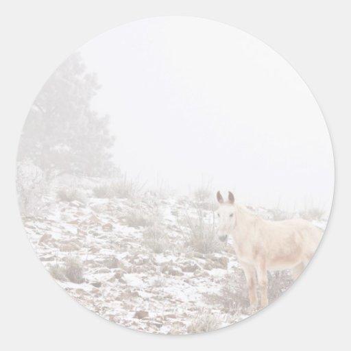 Pferd mit Winter-Jahreszeit-Schnee und Nebel Runder Sticker