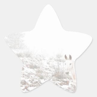 Pferd mit Winter-Jahreszeit-Schnee und Nebel Sternaufkleber