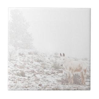 Pferd mit Winter-Jahreszeit-Schnee und Nebel Keramikfliese