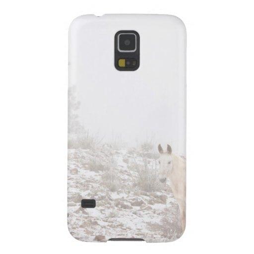Pferd mit Winter-Jahreszeit-Schnee und Nebel Hülle Fürs Galaxy S5