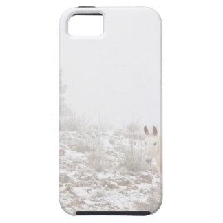 Pferd mit Winter-Jahreszeit-Schnee und Nebel iPhone 5 Etui