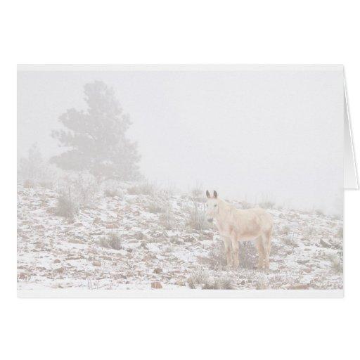 Pferd mit Winter-Jahreszeit-Schnee und Nebel Grußkarten