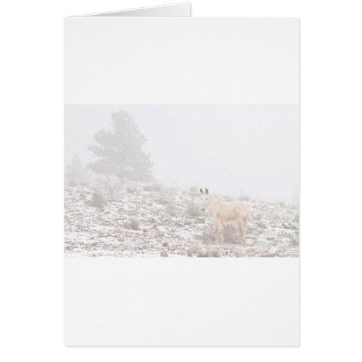 Pferd mit Winter-Jahreszeit-Schnee und Nebel Grußkarte