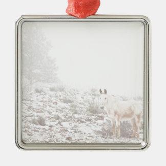Pferd mit Winter-Jahreszeit-Schnee und Nebel Weihnachtsornament