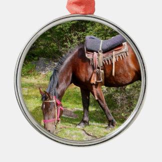 Pferd nahe EL Chalten, Argentinien Silbernes Ornament