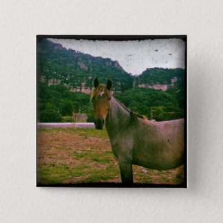 Pferd Quadratischer Button 5,1 Cm