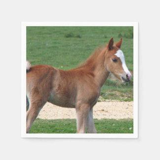 Pferd Serviette