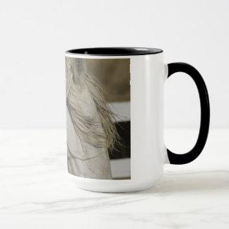 Pferd träumt Tasse
