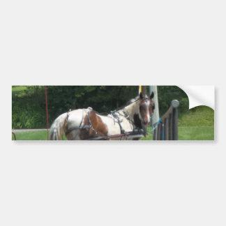 Pferd und Buggy Autoaufkleber