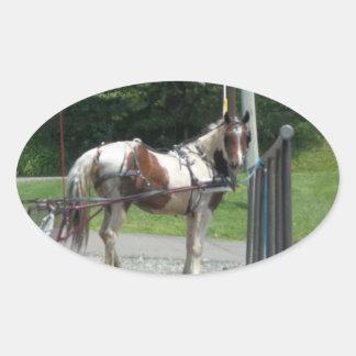 Pferd und Buggy Ovaler Aufkleber