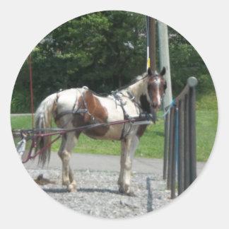 Pferd und Buggy Runder Aufkleber
