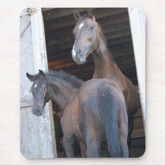 Pferd und Pony Mousepad