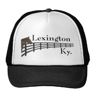 Pferd und Zaun Lexingtons Kentucky Netzkappe