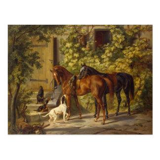 Pferde am Portal Postkarte