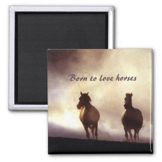 Pferde auf dem Hügel-Magneten