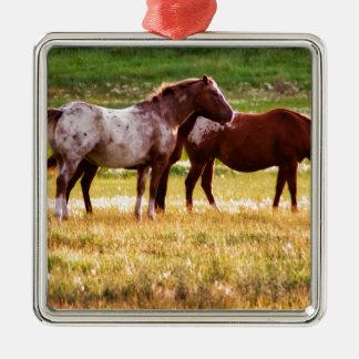 Pferde auf Weide Silbernes Ornament