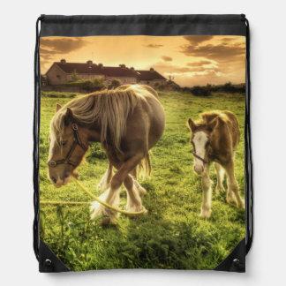 Pferde bemuttern und fohlen turnbeutel