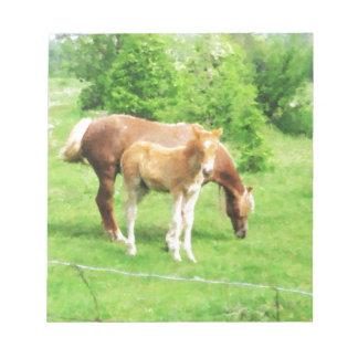 Pferde, die auf dem Gebiet sich entspannen Notizblock