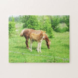 Pferde, die auf dem Gebiet sich entspannen Puzzle
