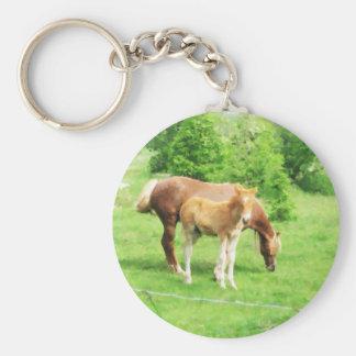 Pferde, die auf dem Gebiet sich entspannen Schlüsselanhänger