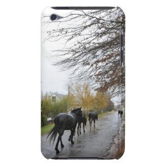 Pferde, die hinunter Eichen-Straße im Regen gehen, iPod Case-Mate Hüllen