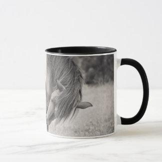 Pferde, die Tasse küssen