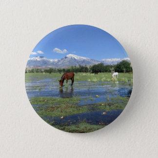 Pferde, die unter Sierra Nevada-Berge weiden Runder Button 5,7 Cm
