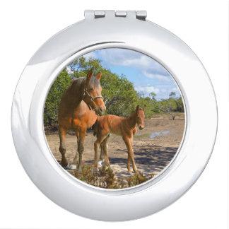 Pferde, Fohlen mit Stute Schminkspiegel
