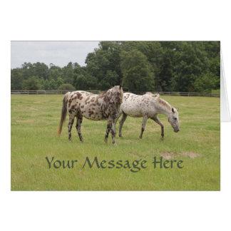 Pferde in der Weiden-Gruß-Karte Karte